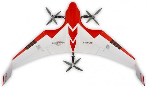 firefly6-02
