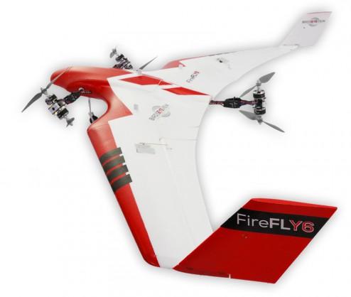 firefly6-05