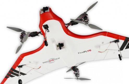 firefly6-06