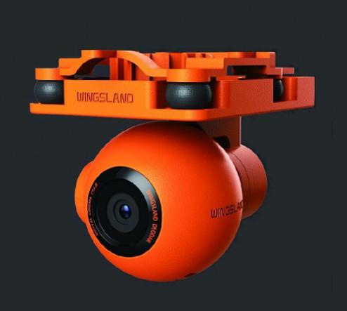 wingsland-scarlet-minivet-03