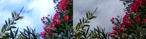 sj4000p-gopro3-zoom4x-1080p