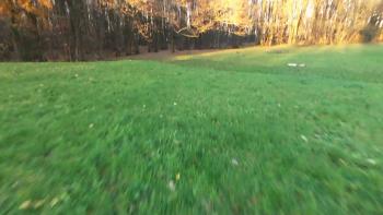 Vidéo 1080p avec un mouvement rapide