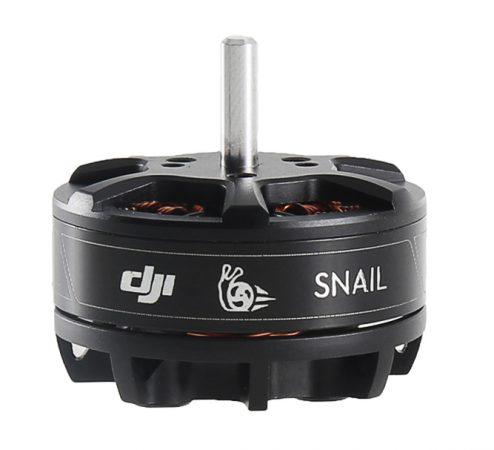 snail-rps-12